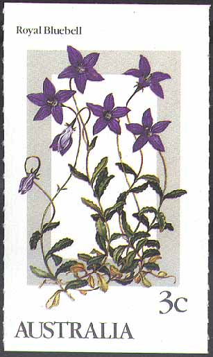 Australian Campanulaceae
